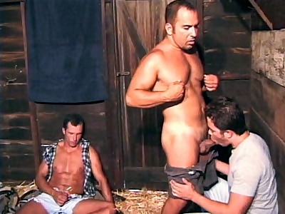gay Barn Boys Group Sex